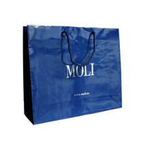 Folding Shopping Bag Printing with Nylon Rope